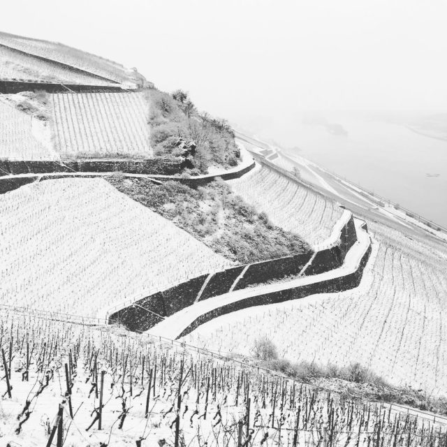 5 hours of snow yesterday in rdesheim made a magichellip