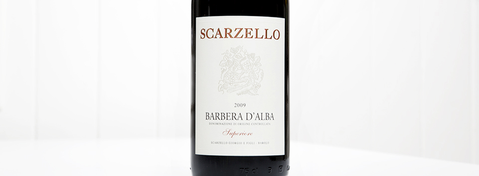 Barbera Superiore 2009-ws